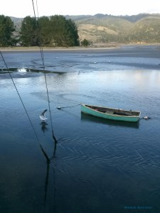 boat-in-water-with-seagull-bolinas-cables-into-water-11-30-16